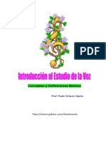Int Estudio Voz.doc