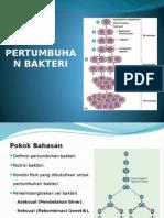 Pertumbuhan Bakteri