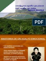 Español_IE.pdf