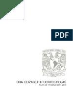 Elizabeth Fuentes Rojas Plan Trabajo