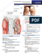 (11M) Gluteal Region - Landmarks, Vessels, and Nerves -Dr. Laygo.pdf