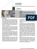 """IFAW """"Tigers"""" Briefing Sheet - COP15 - CITES"""