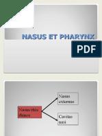 Nasus Et Pharynx