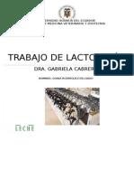 Trabajo de Lactologia