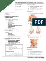 Respiratory System
