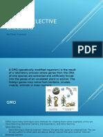 gmo vs selective breeding