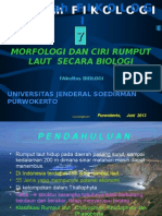 1 Kuliah i Morfologiy