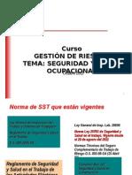 Seg y Salud Ocupacional 2011_rtytrHM