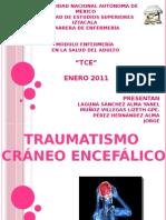 Traumatismo Craneo encefalico
