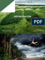 deforestacionherrera-nardini2013-130507133714-phpapp01.pdf