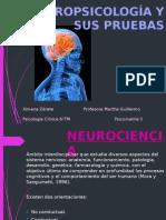 Neuropsicología Tests (1)