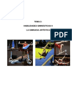 TEMAS DE GIMNASIA TRABAJAR.pdf