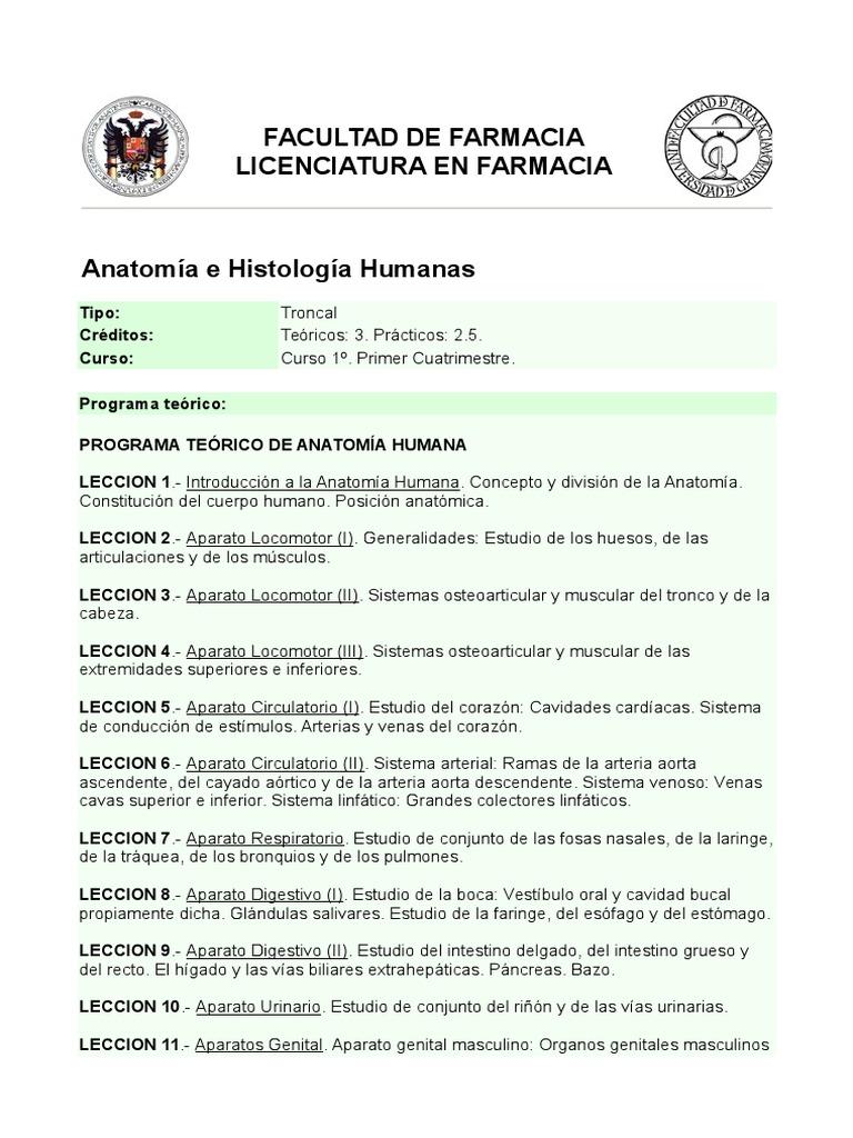 Fantástico Las Vías Anatómicas Cursos Bandera - Imágenes de Anatomía ...
