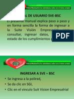 Manual Suite Vision