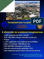 Toxoplasmose Na Gestação 16h_helaine_milanez
