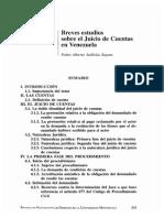 Breves Estudios Sobre El Juicio de Cuentas en Venezuela