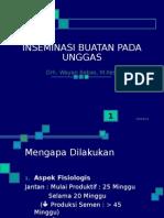 Teknik IB Unggas