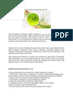 Biodata Dan Sejarah Ringkas Nabi Muhammad S