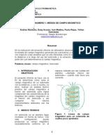 Informe-UA Lineas Equipotenciales