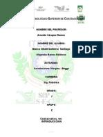 CORRELACIÓN-DE-VASQUEZ.docx