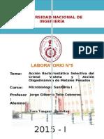LABO 5-microbiologia