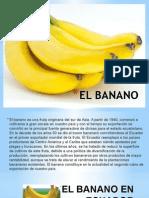 EL BANANO.pptx