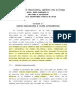 DARIO RODRIGUEZ - Cultura Organizacional