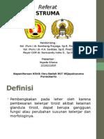 Struma - 06042015