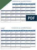528900_FUNDACION GIL GAYARRE POZUELO   _201506.pdf