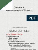 IT AUDIT - Data Management Systems