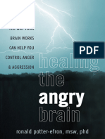 Ronald Potter-Efron - Healing the Angry Brain