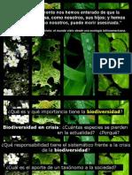 Clase 1_2014 _ Diversidad biologica_ Sistematica biologica.pdf