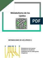 Metabolismo Lipidos 1 UDD