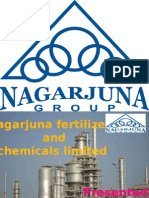 Presentation on Nagarjuna Fertilizers
