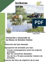 Presentación Razas Lecheras Bos Taurus 2011