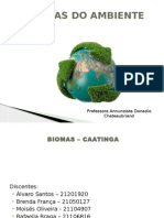 BIOMAS - CAATINGA Ciencias Do Ambiente