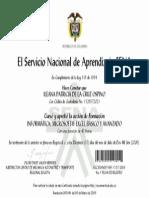Diploma Sena.pdf
