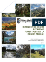 Diagnóstoco-forestal
