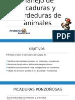 Manejo de Picaduras y Mordeduras de Animales