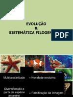 Aula Sistemática Filogenética