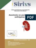 Anestesia Em Pacientes Nefropatas