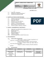 Sos.p.mo.Tum.ccr - Comunicación de Chimenea Raise Borer - V1-Rv2