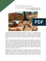 4O Pico do Solo e a degradação da biocapacidade