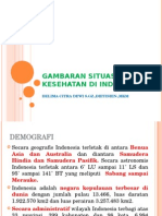 Gambaran Situasi Kesehatan Di Indonesia