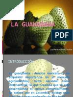 Foda de La Guanabana-120810161555-Phpapp02