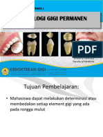 MORFOLOGI GIGI PERMANENT FIX.pdf