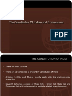 Constitution and Environment