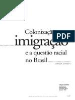 SEYFERTH, Giralda. Colonização, Imigração e a Questão Racial No Brasil.
