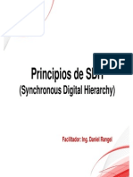 Curso Principios de SDH