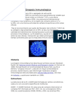 Sinapsis Inmunologica